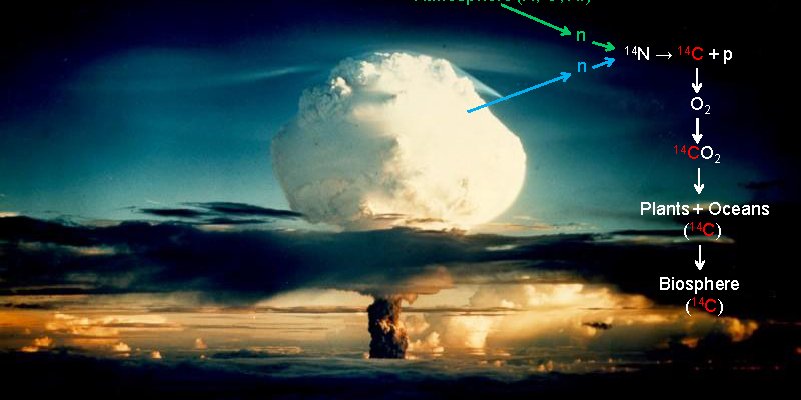 Miller Endowed Lecture: The Ugly and the Beautiful: Versatile Uses of the 14C Bomb Peak